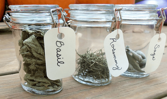 12 Tips to Take you Herbs Successfully