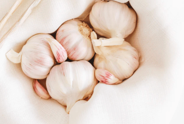 Garlic Honey Bomb